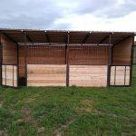 Extra Height Swinging Stalls